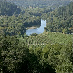 Russian River Valley, Sonoma County