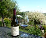 Bergstrom Pinot Noir
