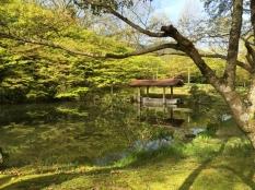 Gardens in Ayabe