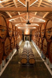 barrel room at Chateau de Beaucastel