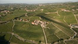 vineyard_4047544_1600