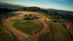 vineyard_8877299_1600